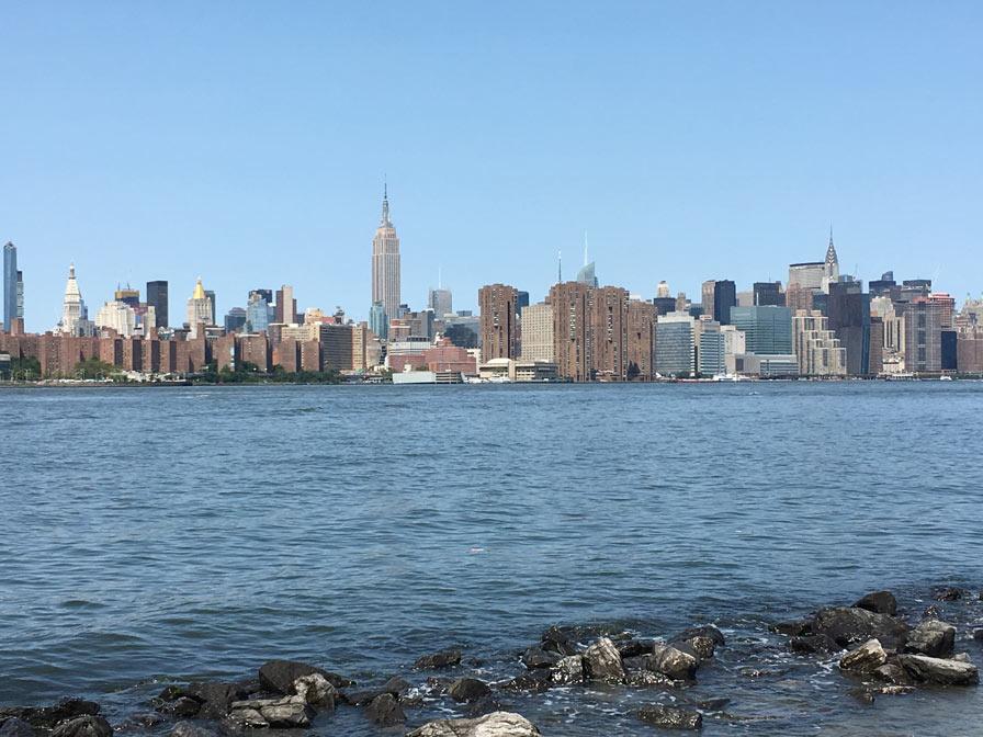 ניו יורק לטבעונים